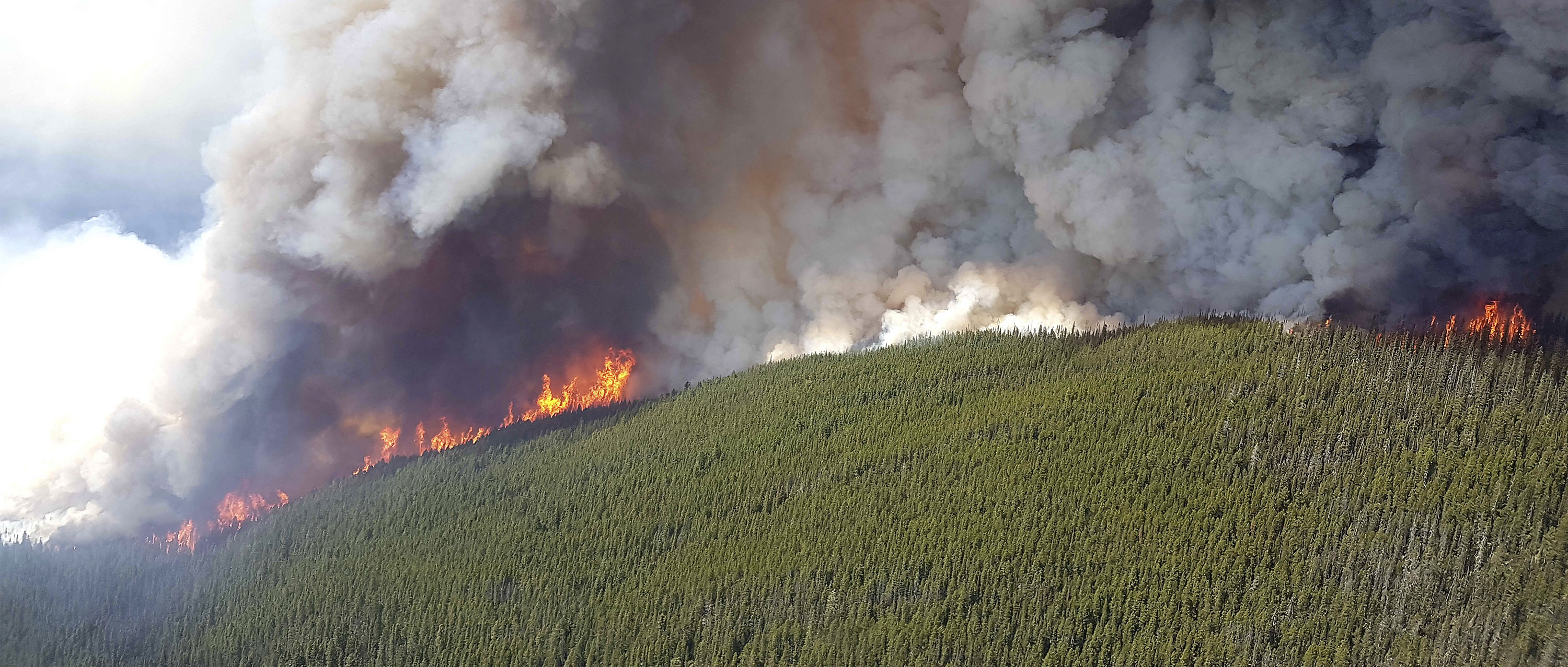 Forest fire at Verdant Creek, BC