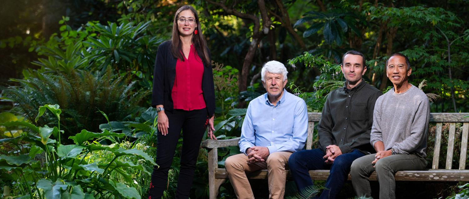 Four UVic researchers pose outside on a wooden bench in an area covered by large trees and ferns