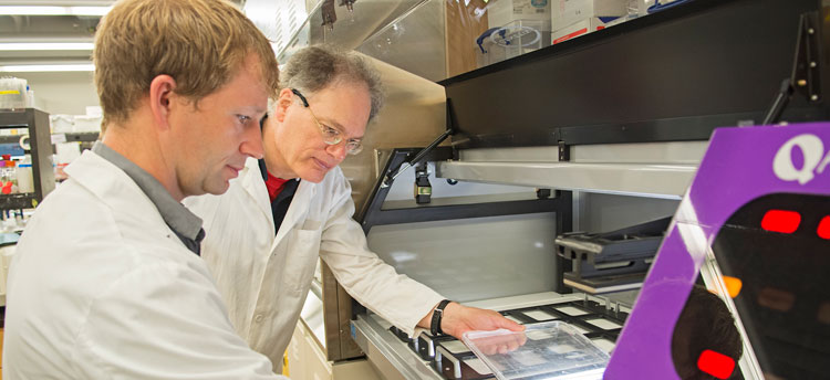 Microbiologists Barry Duplantis and Francis Nano in the lab