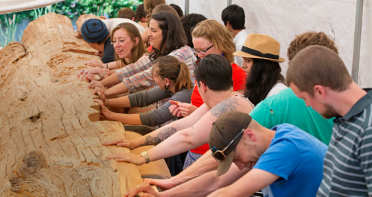 Students leaning against a log