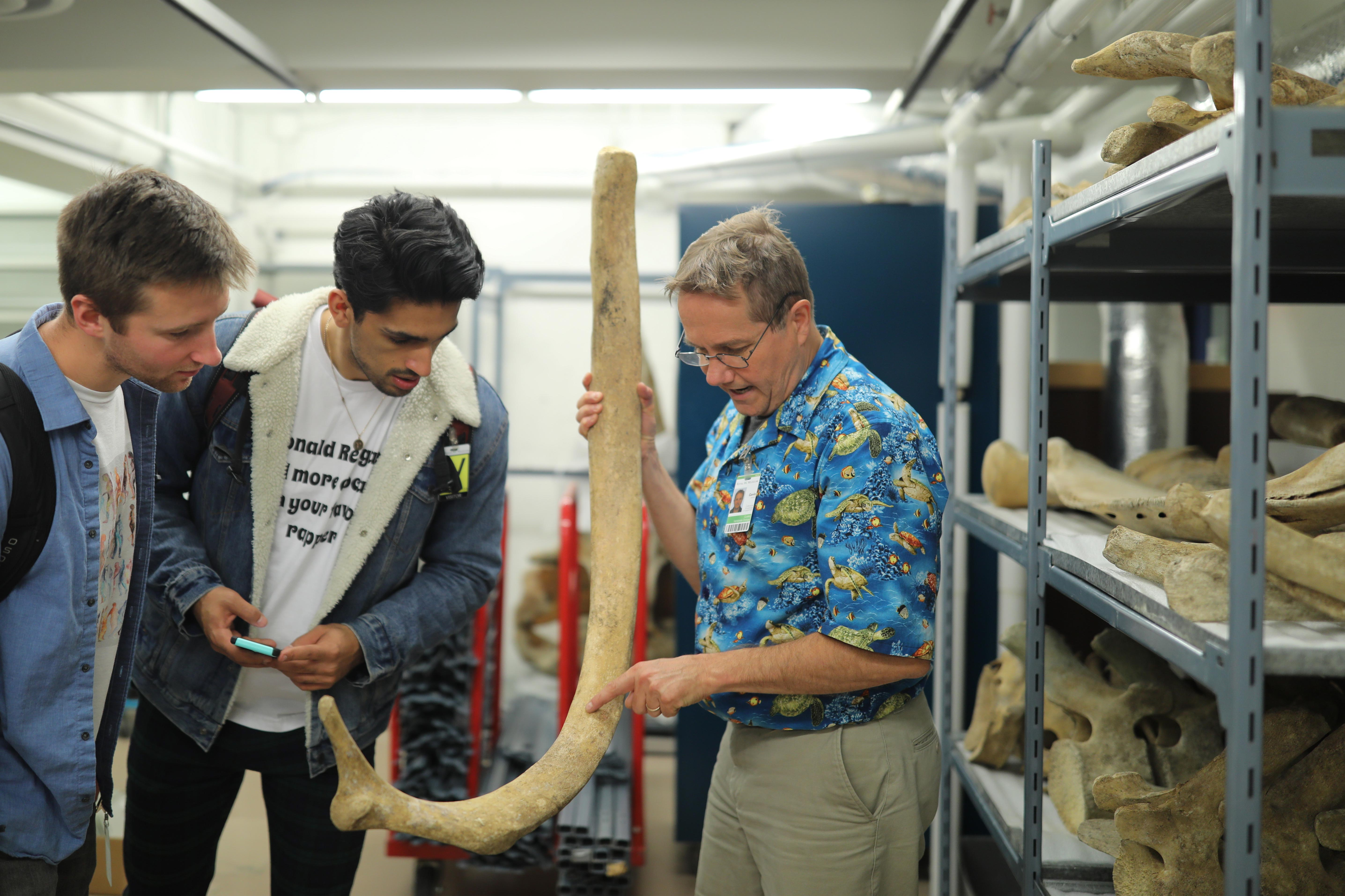 Man pointing out something on a large whale bone to two UVic students
