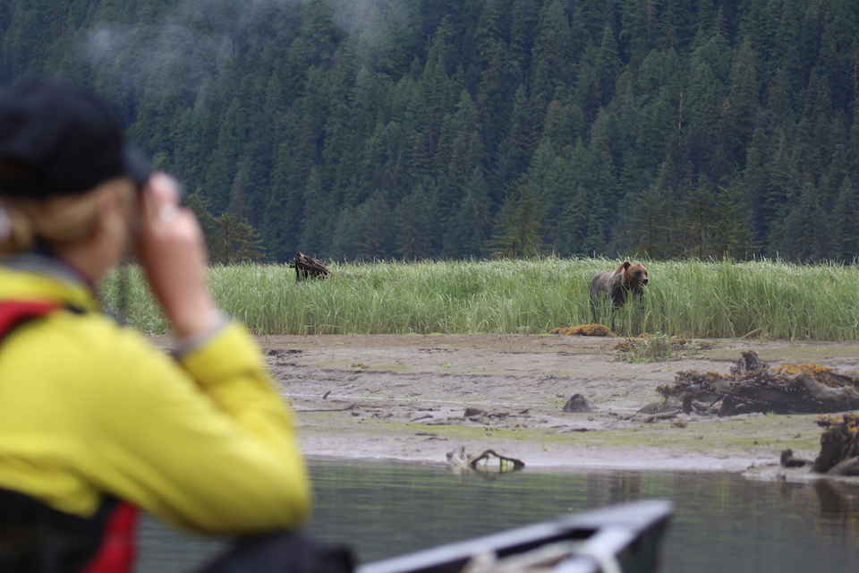 Armstrong taking a photo of a bear across a river.