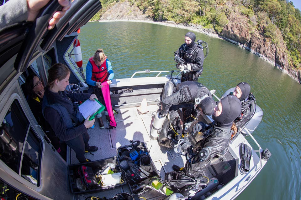 On board, preparing for a dive.