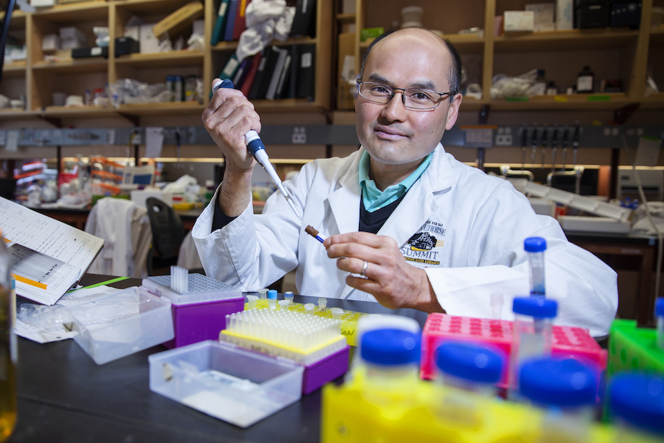 Sugar and immune cell cancer research - University of Victoria